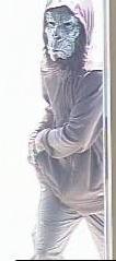 Robbery Suspect Gorilla Mask 2 - Crop